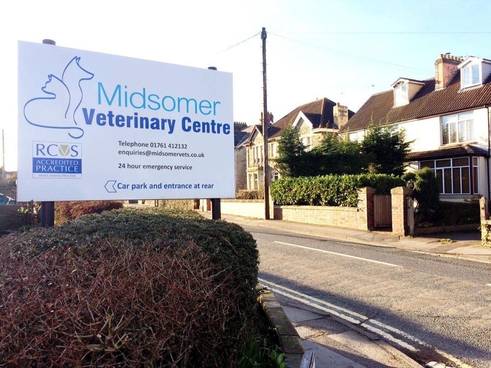 about-the-vet-practice-midsomer-vets-vet-in-midsomer-norton-gallery-1